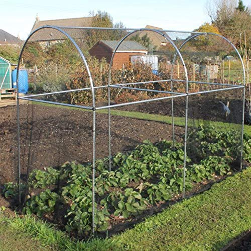 Tall Domed Fruit Vegetable Garden Cage Frame