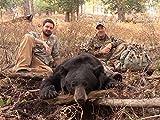 Oregon Spot & Stalk Bear Hunt Part I