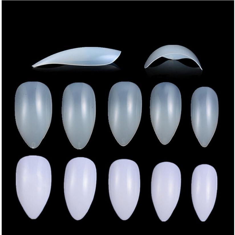 ブロック充実経過Honel つけ爪 無地 ショート ネイルチップ クリア ネイルチップ 短い 600枚入れ 10サイズ 爪にピッタリ 付け爪 練習用 透明 シャープ ポイント (ハロウィン コスプレも対応できます)