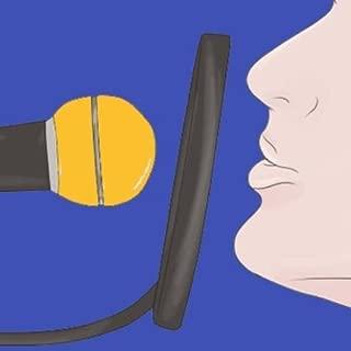 voice voice changer