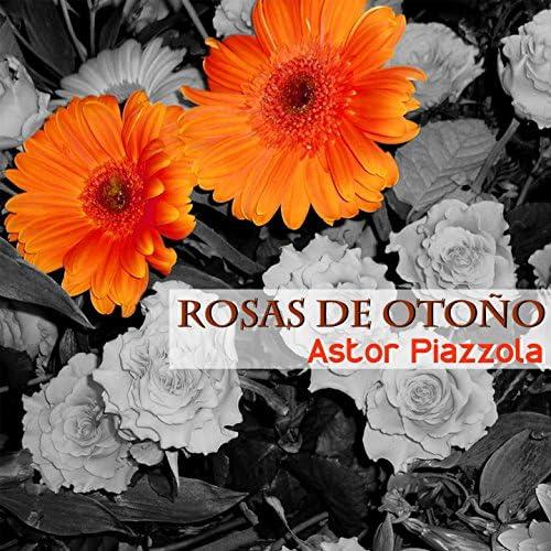 Francisco Fiorentino, Astor Piazzola y Su Orquesta
