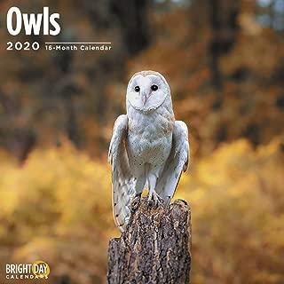 2020 Owls Calendar 16 Month 12 x 12 Wall Calendar by Bright Day Calendars - 2020 Bird Calendar (Owls 2020)