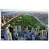 Poster New York Central Park - Papier 91.5 x 61 cm Grün