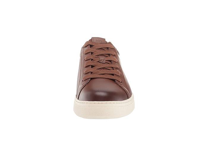 Coach C126 - Zapatos Tenis > De Atletismo