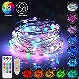 [2020 NEU] Elitlife 10M Bunt LED Lichtschlauch Außen, 100 LEDs USB LED Bunt Lichterkette RGB Lichterschlauch Wasserfest mit Fernbedienung,12 Farben 12 Modi für Innen Outdoor Party Hochzeit