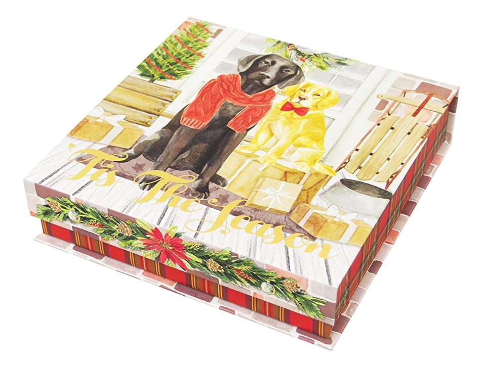 デッド相関するアリスパンチスタジオ 【クリスマス】 スクエアフラップボックス(ラブラドール) メリーペット (Sサイズ) 45357