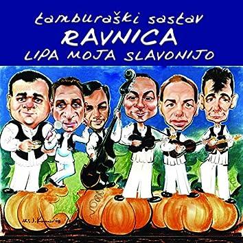 Lipa Moja Slavonijo