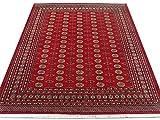 Alfombra tradicional persa hecha a mano Bokhara, lana, ladrillo de fuego, grande, 251 x 311 cm, 8 pies 3 pulgadas x 10 pies 3 pulgadas (pies)