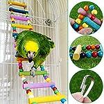 UEETEK Échelle colorée oiseau jouet, pont de l'arc-en-ciel en bois Flexible 12-escabeaux balançoires pour perroquets Trainning pour animaux de compagnie (couleur aléatoire) #3