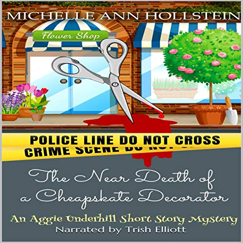 The Near Death of a Cheapskate Decorator Audiobook By Michelle Ann Hollstein cover art