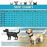 Zoom IMG-1 pumyporeity giubotto di salvataggio cani