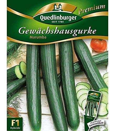 Quedlinburger Gewächshaus-Gurke 'Marumba', 1 Tüte Samen