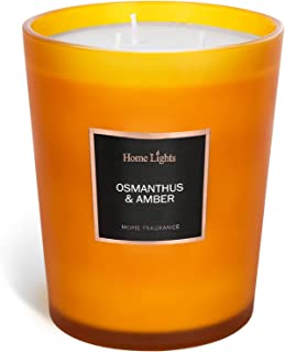 HomeLights Scented Candles | Large Jar Candle - 33.3 Oz. Natural Soy Aromatherapy Candles | 60+ Hour Burn Time with 3 Cott...