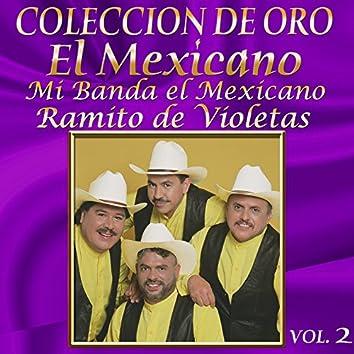 Colección de Oro Vol. 2 Ramito de Violetas