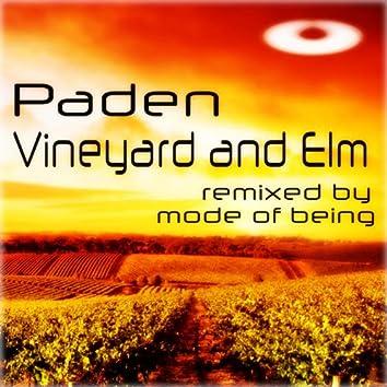 Vineyard and Elm
