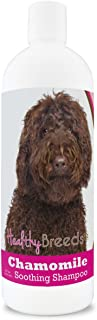Healthy Breeds Chamomile Dog Shampoo & Conditioner with Oatmeal & Aloe for Labradoodle, Dark Brown - OVER 200 BREEDS - 8 o...