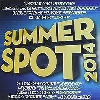 Summer Spot 2014