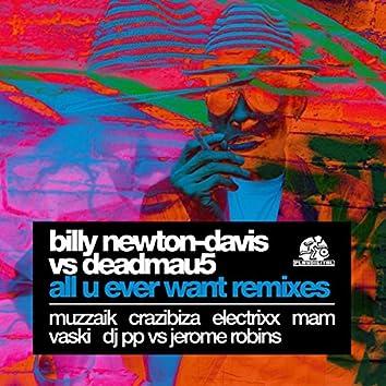 All U Ever Want Remixes