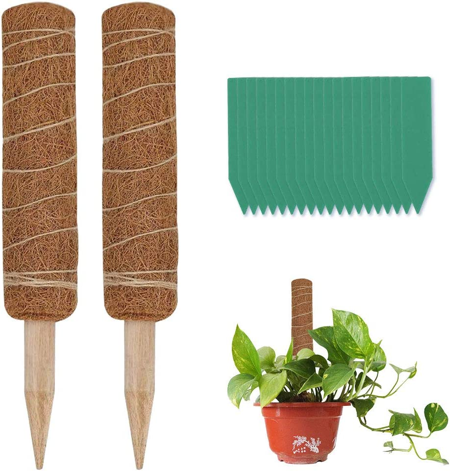 YBB 2 Pack 12 Inch Limited time trial price Coir Moss Natural Totem Poles Max 74% OFF Organic and Co