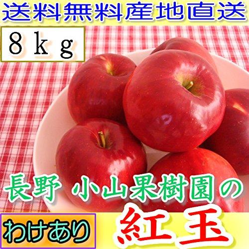 【訳あり】減農薬 長野 生食用 紅玉 りんご 約8kg 小玉32〜60個入 リンゴ 林檎 産地直送 小山