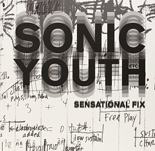 Sonic Youth Etc.: Sensational Fix by Elein Fleiss (2008-12-18)