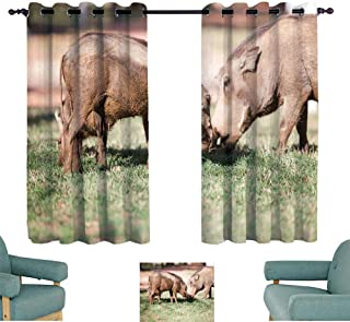 WinfreyDecor Heat Insulation Curtain Mud Covered Warthogs Feeding on Grass Privacy Protection 63