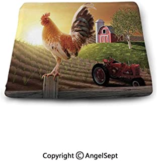 Square Chair Seat Cushion for Kitchen Dining Chairs,Modern,Farm Barn Yard Image Kitchenware and Home Decor Rooster Early Bird Natural Sunrise,Light Brown Red,Memory Butt Pad Non Slip