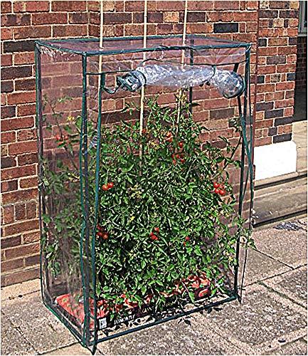 Tomaten-Gewächshaus Treibhaus Tomatenhaus Folienzelt Frühbeet