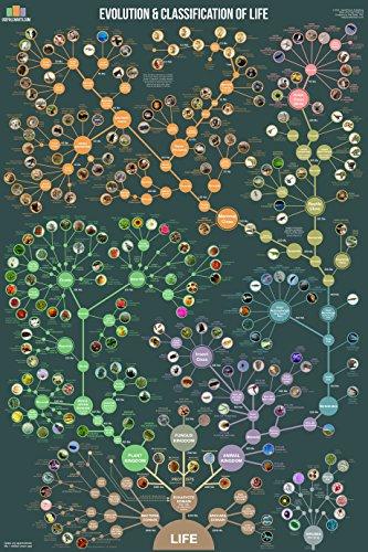 Life Science Taxonomies