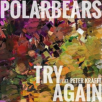 Try Again (feat. Peter Krafft)