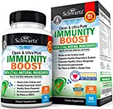 Immunity Boost Supplement with Elderberry, Vitamin A, Echinacea & Zinc - Once Daily Multi-System Immune Defense - Dr. Approved Formula - Supports a Healthy Respiratory System - 90 Capsules