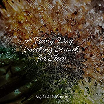A Rainy Day - Soothing Sounds for Sleep