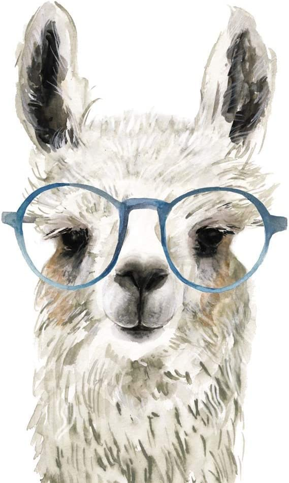 Hip Llama II by Victoria Borges Art inches 20 Seasonal Wrap Introduction x Fort Worth Mall Print 26