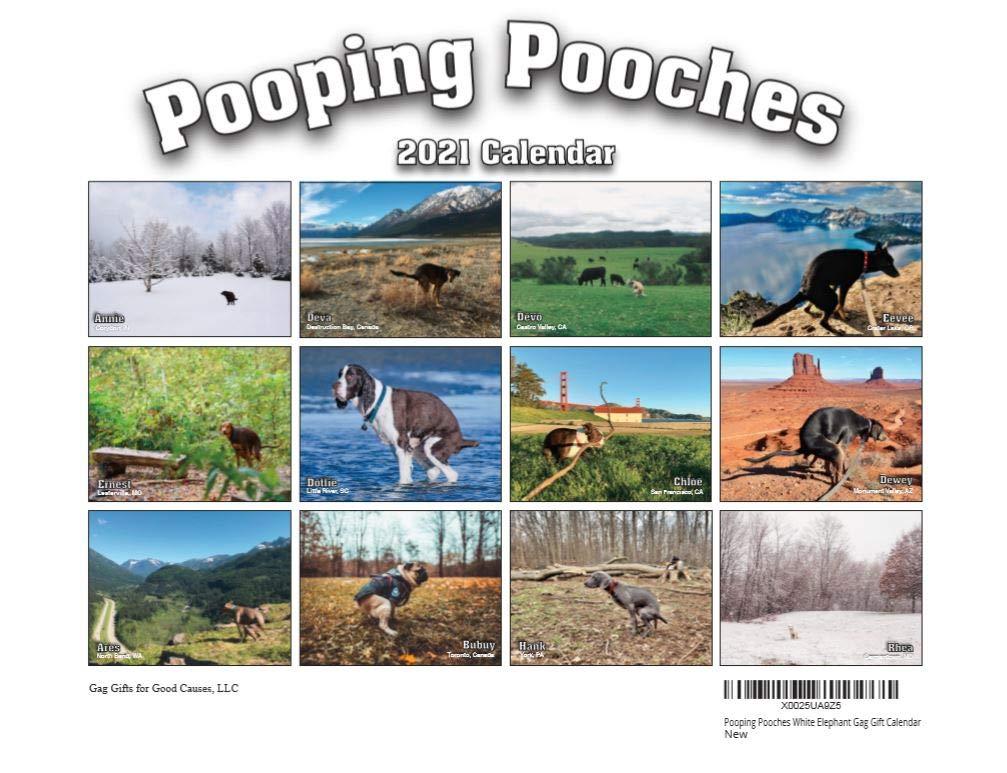 2021 Pooping Pooches White Elephant Gag Gift Calendar: Buy Online