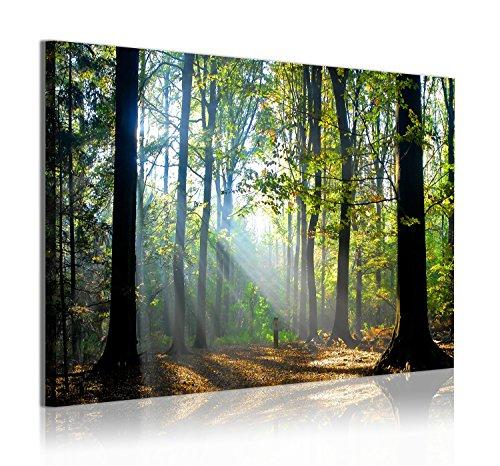 DekoArte 312 - Cuadros Modernos Impresión de Imagen Artística Digitalizada | Lienzo Decorativo Para Salón o Dormitorio | Estilo Paisaje Bosques Árboles con Rayos de Sol Naturaleza | 1 Pieza 120x80cm