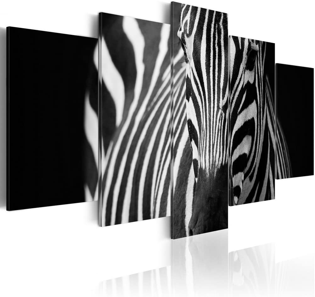 3 Panel Abstract Zebra Modern Decor Canvas Wall Art HD Print