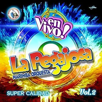Super Calidad Vol. 2. Música de Guatemala para los Latinos (En Vivo)
