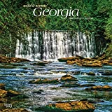 Georgia Wild & Scenic 2021 12 x 12 Inch Monthly Square Wall Calendar, USA United States of America Southeast State Nature
