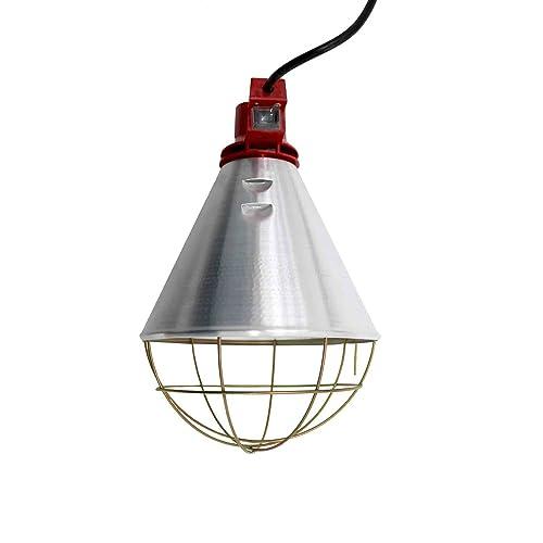 Heat Lamp For Puppies Amazon Co Uk