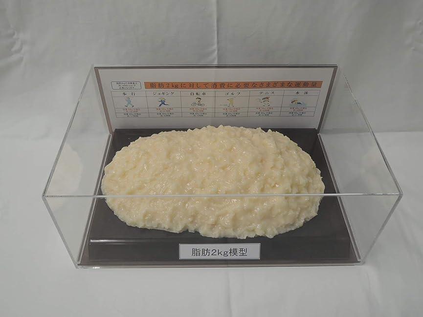 病気の強制吸い込む脂肪模型 フィギアケース入 2kg ダイエット 健康 肥満 トレーニング フードモデル 食品サンプル