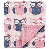 Hudson Baby Unisex Baby Plush Mink Blanket, Owls, One Size