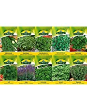 10 variedades | Surtido de semillas de hierbas | adecuado para principiantes | ahora precio especial de invierno