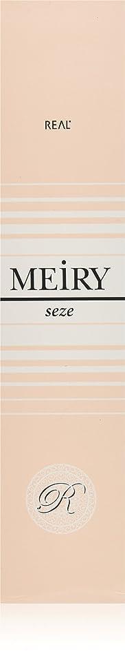悔い改める敵意同意するメイリー セゼ(MEiRY seze) ヘアカラー 1剤 90g 3NB
