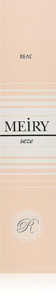 診断する賞賛失望メイリー セゼ(MEiRY seze) ヘアカラー 1剤 90g 3NB
