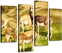 Animals in The Zoo in Ostrava Military Helicopter Canvas Wall Art Hanging Paintings Modern Artwork Abstract Picture Prints Home Decoration Gift Unique Designed Framed 4 Panel