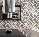 SD Stencil Maze, plantilla decorativa reusable para pintar con efecto papel tapiz