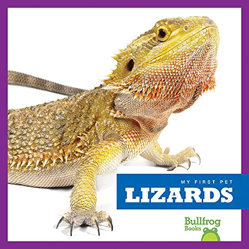 Lizards (Bullfrog Books: My First Pet)