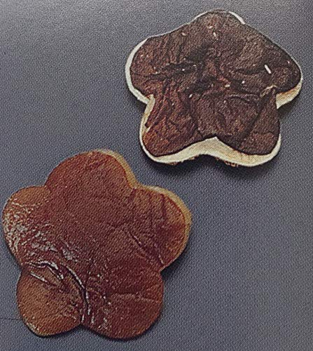 乾燥 花しいたけ ( 大 ) 150g×20P(P約120〜170粒) 個Φ約3.5�p 椎茸 業務用 激安