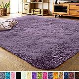 LOCHAS Luxury Velvet Living Room Carpet Bedroom Rugs, Fluffy, Super Soft Cozy, Bright Color, High Pile, Floor Area Rugs for Girls Room, Kids, Nursery and Baby (5.3x7.5 Feet, Grey Purple)