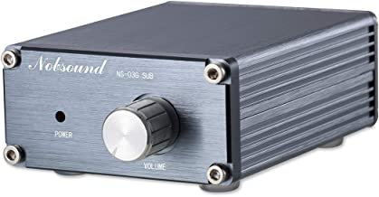 Nobsound 100W Subwoofer Digital Power Amplifier Audio Mini Amp (Subwoofer, Gray)